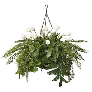 Outdoor Fern and Palm Hanging Arrangement