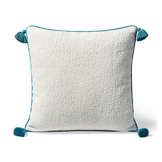 Carranor Indoor/Outdoor Pillow