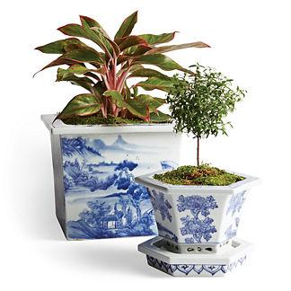 Blue Ming Handpainted Ceramic Cachepot