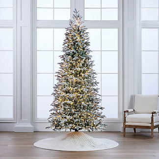 Snowdrift Noble Fir Tree