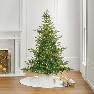 Grand Fir 7 ft. Tree