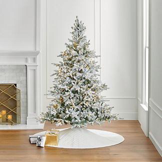 Snowy Grand Fir 7 ft. Tree