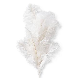 Multi-plume Feather Stem, Set of Six
