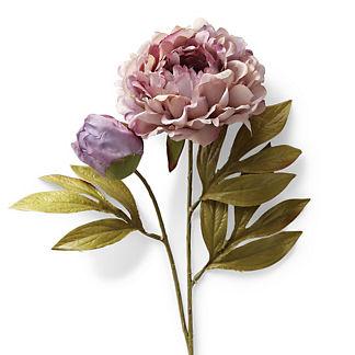 Full Blossom Lavender Peony Stem, Set of Six
