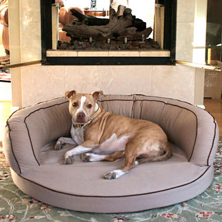 L.A. Dog Ortho Bolster &#174