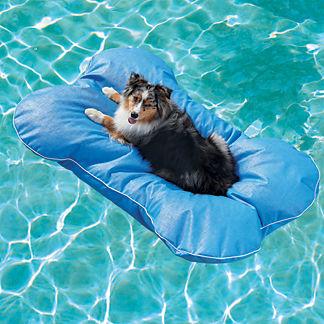 Dog Bone Pool Float