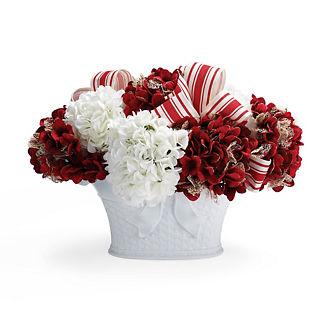 Candy Stripe Hydrangea Arrangement