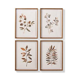 Lakeside Botanicals Giclee Prints
