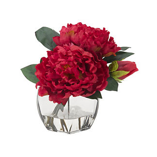 Beauty Peonies in Glass Cube