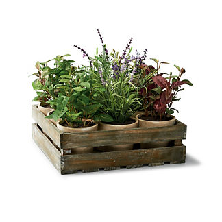 Mixed Herb Crate