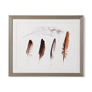 Feather Study I Giclee Print