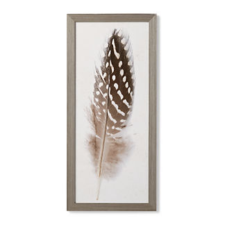 Guinea Hen Feather Giclee Print I