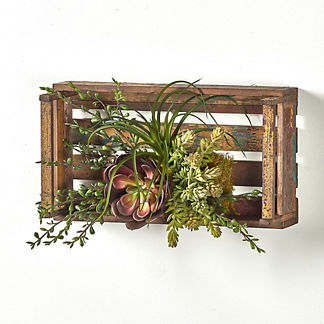 Succulents and Foliage in Wooden Crate