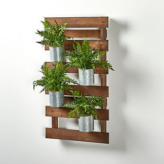 Leatherleaf Ferns in Wooden Wall Slats