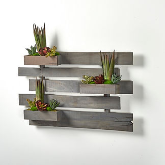 Assorted Succulents Wall Slats in Weathered Wood