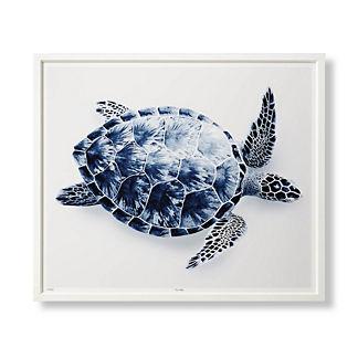 Indigo Turtle Giclee Print