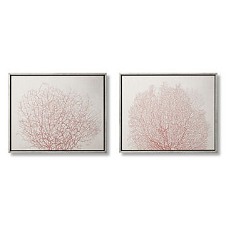 Coral Impressions Giclees, Set of Two