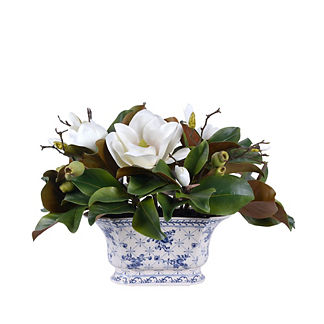 Magnolia In Ceramic Pot