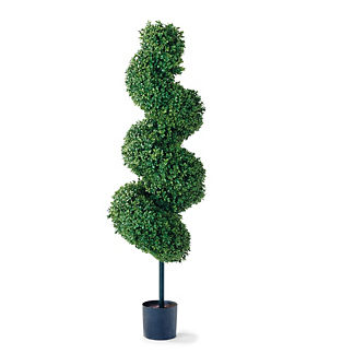 5' Spiral Outdoor Boxwood Topiary