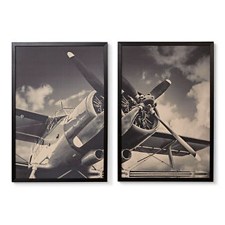 Vintage Propeller Giclee Diptych