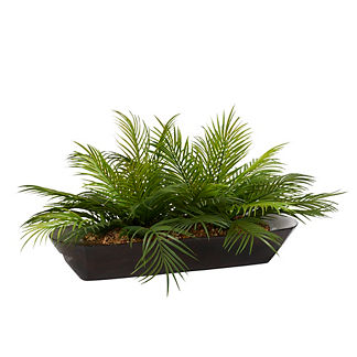 Palm Fronds in Wooden Bowl