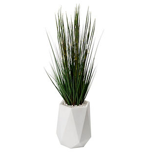 Onion Grass in White Resin Planter