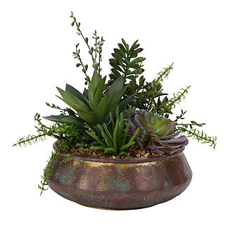 Aloe and Jade Plant in Aged Bowl