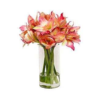 Mauve Amaryllis in Vase