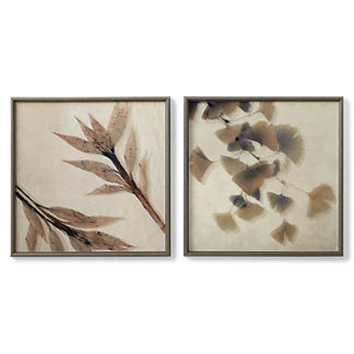 Alcudia Botanical Leaf Prints