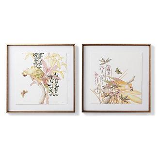Blushing Parrots Giclee Prints
