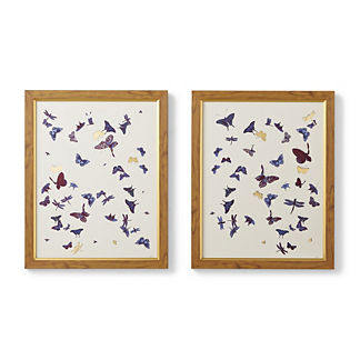 Floating Butterflies Giclee Prints