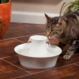 Avalon Ceramic Pet Fountain