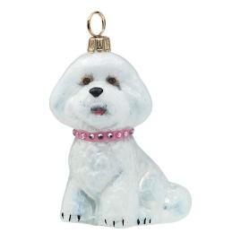 Diva Dog Bichon Frise with Pink Jeweled Collar
