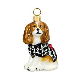 Diva Dog Cavalier King Blenheim in Houndstooth Sweater