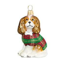 Diva Dog Cavalier King in Tartan Plaid Coat