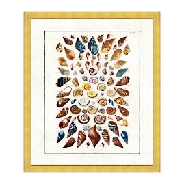 Natural Treasures IV Print from the New York