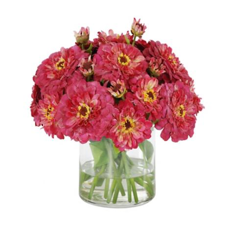 Zinna in Glass Vase