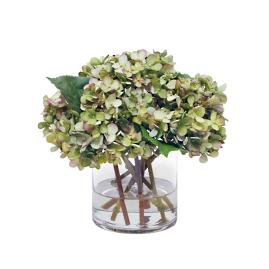 Hydrangea with Leaves in Glass Vase