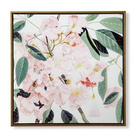 Island Botanicals Rosy Trumpet Tree Giclée on Canvas