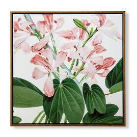 Island Botanicals Orchid Tree Giclée on Canvas from