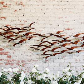 Soaring Birds Wall Art