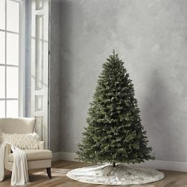 Grand Blue Spruce 7-1/2' Full Profile Tree