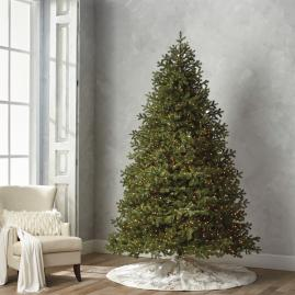 Balsam Fir 9' Full Profile Tree with Stand