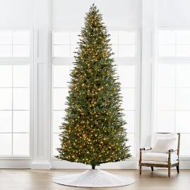 Fraser 12' Slim Profile Tree