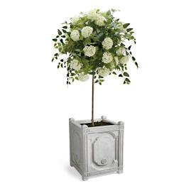 "50"" Snowball Flower Potted Plant"