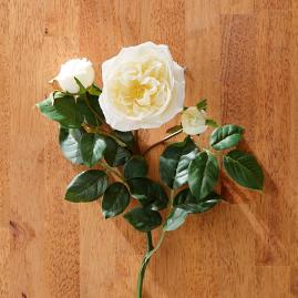 Faux English Rose Stems, Set of Six