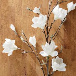 Faux Magnolia Stems, Set of Four