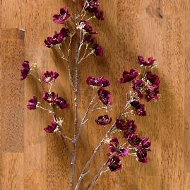 "Cherry Blossom 40"" Stems, Set of Six"