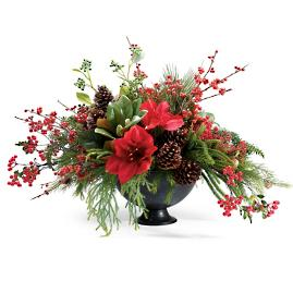 Holiday Glen Potted Arrangement