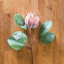 "Pink Protea 24"" Sprays, Set of Four"